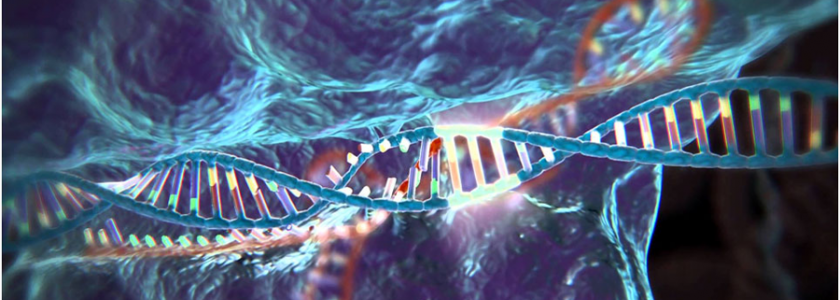 What is CRISPR-Cas9?